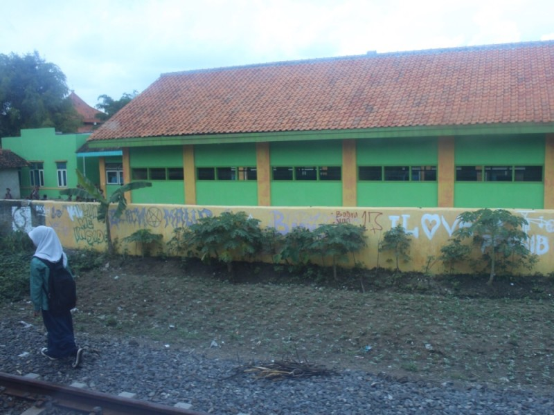 Школьница