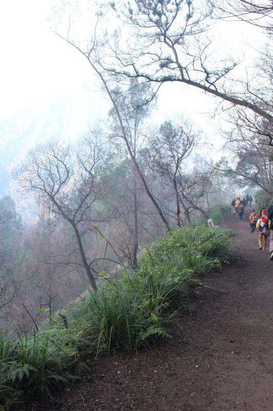 Дорога вниз с вулкана Иджен