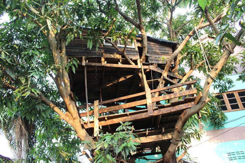 Домик на дереве - оказался гэст