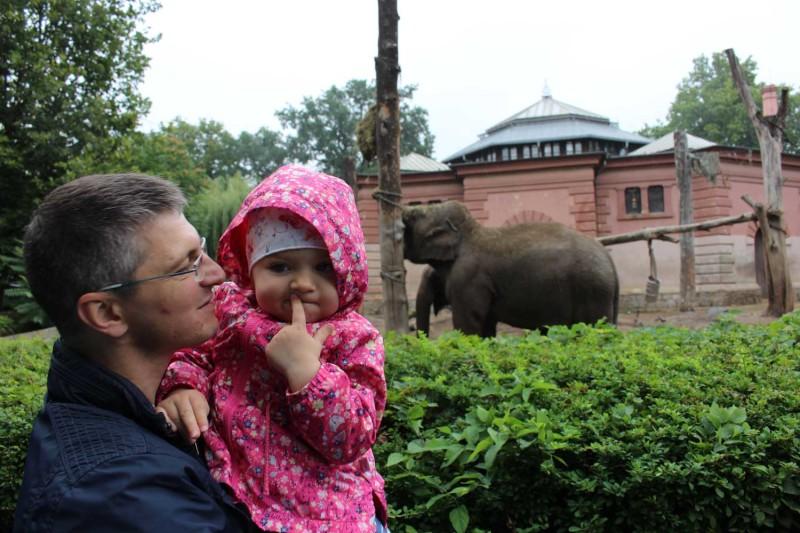 Зоопарк Вроцлав